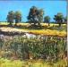Schilderij-Hoogwater-80x80cm-olieverf-op-doek