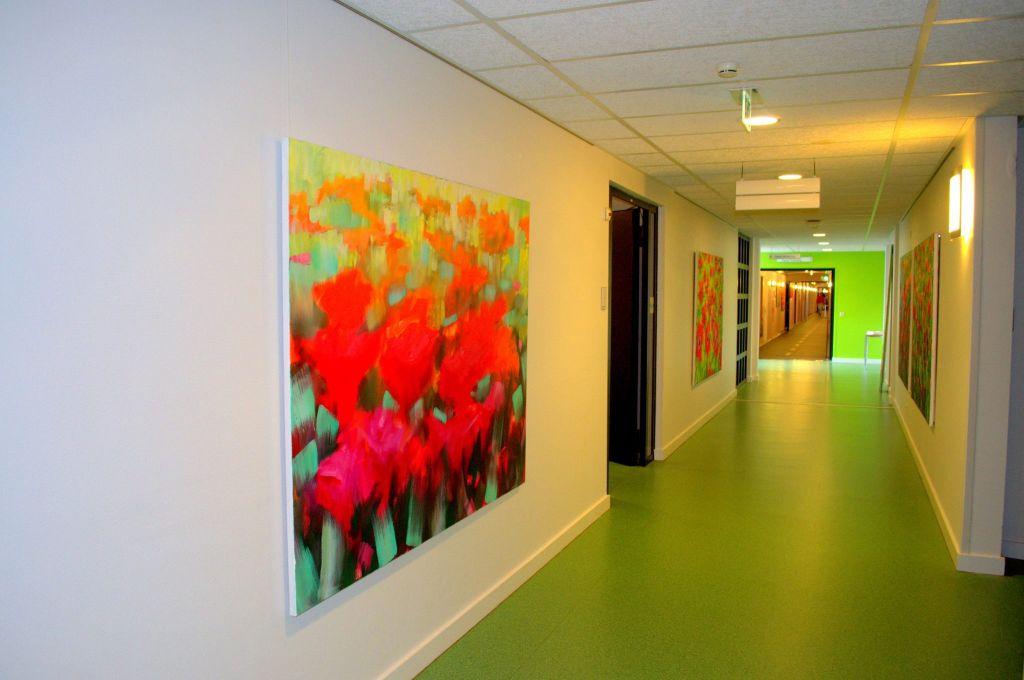 """Expositie """"Kunst als medicijn"""" van 25 juni t/m 24 september 2015 in ziekenhuis Nij Smellinghe te Drachten"""