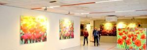 """Expositie """"Kunst als Medicijn"""" in het Medisch Centrum Alkmaar"""