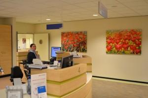 Expositie veldbloemen ingericht in Medisch Centrum Haaglanden